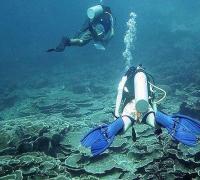 Apa Pentingnya Kompetisi Pariwisata di Indonesia?
