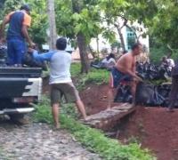 Antisipasi Bencana, Lintang Tahura-PWI Tanam 15 Ribu Bibit Di Register 19