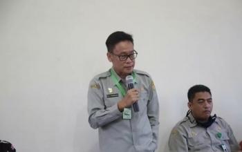 Indonesia perlu banyak wirausaha pertanian untuk wujudkan swasembada pangan