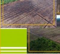 Adanya Maklumat Sponsor dari Sinarmas Grup, Kapolda Riau Takut Terhadap PT Arara Abadi