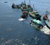 Kronologi Tertangkapnya 7 Kapal Tangkap Ikan Secara Ilegal di Perairan Rohil